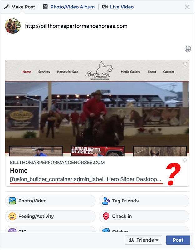 Facebook Website Share with Bad Description
