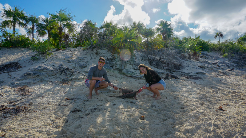 Feeding Iguanas at Leaf Cay